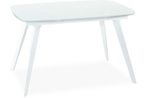 Стол с закалённым стеклом эллиптической формы ASTRA